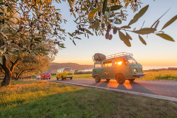 Gourmet excursion with vintage cars